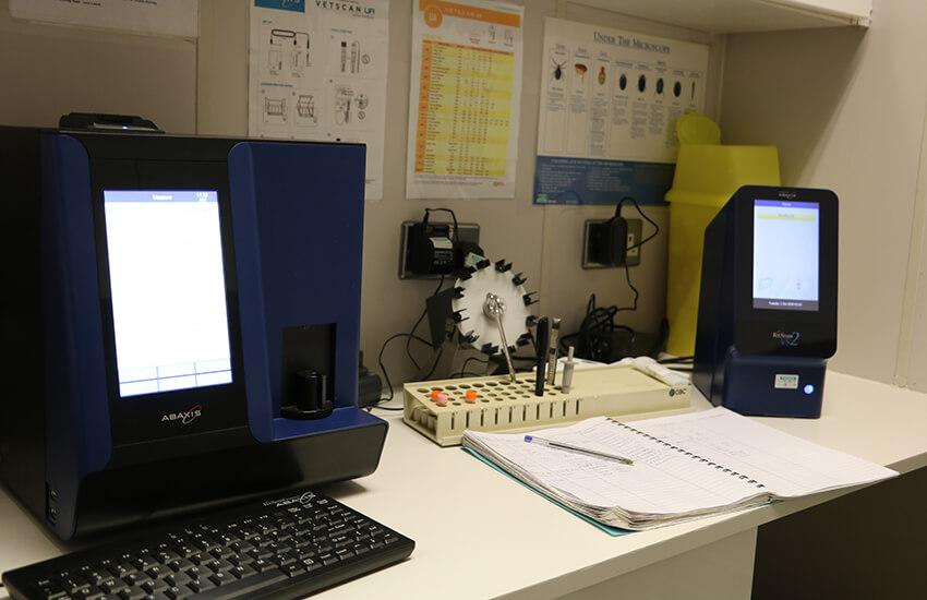 Pet surgery equipment in laboratory