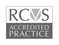 RCVS accredited Vet Practice Bristol